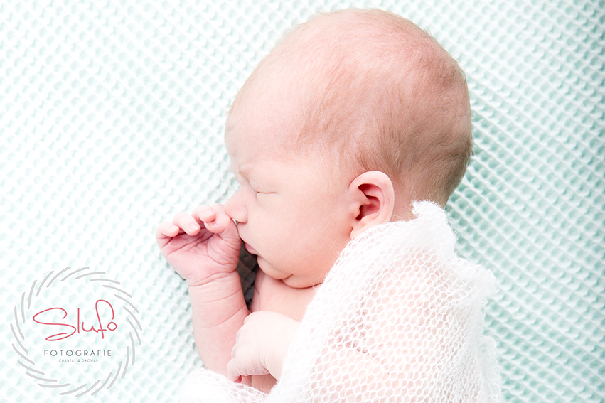 Newbornshoot Nora